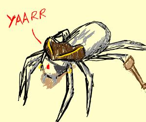 Spider pirate