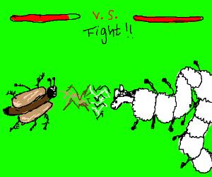 Hot dog ant vs Sheepipede