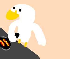 White duck cooks breakfast