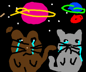 sad cats are crying in space