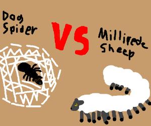 Millipede-Sheep vs Dog-Spider.. NIGHTMARE FUEL
