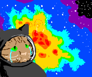 Crying space cats.