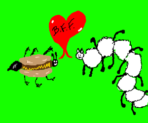 Hot dog ant and Sheepipede are now friends