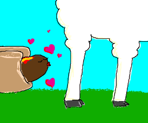 hotdog about to kiss a sheep
