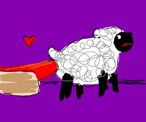 Hotdog's sausage loves Sheep's butt.
