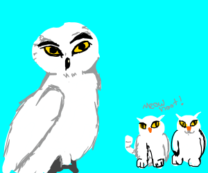 Male Snowy owl with a litter of Owl-Kittens