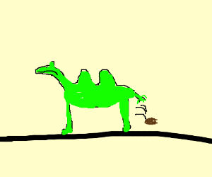 A green camel pooping
