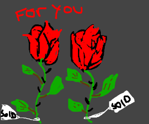 I bought you TWO roses!