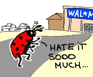 Ladybug warrior heads to the supermarket.