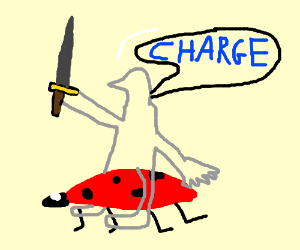 Knight on a ladybug.