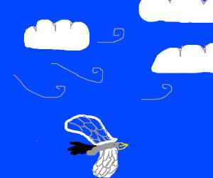 Eagle flying upside down