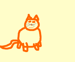 A bad drawing of a cat.