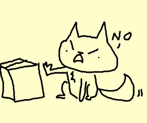 cat doesn't like boxes