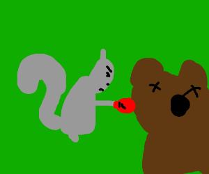 Squirrel using bear-head as punching-ball