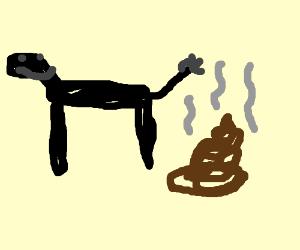 Donkey Dung