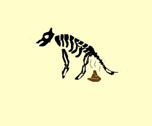 Black skeleton dog does a stinky poop