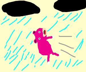 slowpoke in strong wind