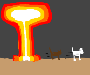 Cats fleeing from a nuke.
