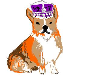 Queen doggie.