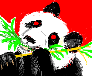 Just a panda gnawing on some bamboo