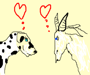 Dalmatian falls in love with a goat