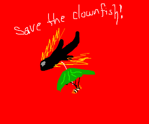 The falling plane dropped the clownfish