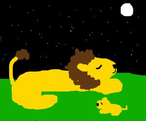 Lion & Cub sleep under starry sky :3