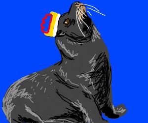 All Hail, King Sea Lion!