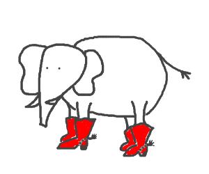 elephant cow boy boots