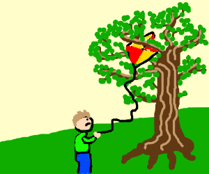 Kid, with his kite stuck in a tree