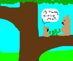 IT'S THANKSGIVING YOU MUTTA KOALA BEAR