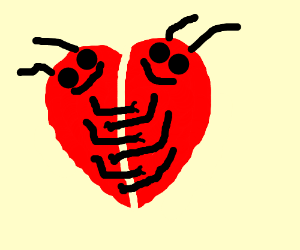 Bugs love each other