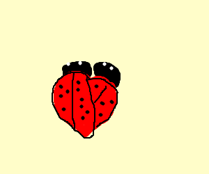 Two ladybugs forming a heart.