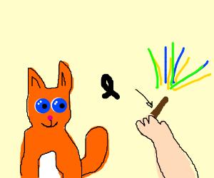 Cute cat and magic wand.