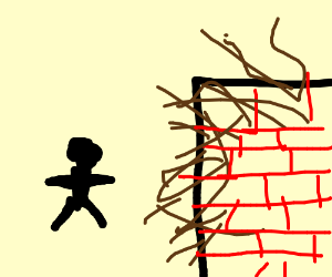Person silhouette next to a hairy wall