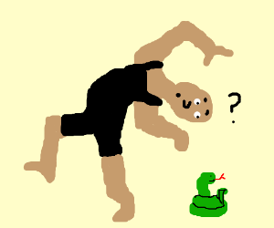 prancing man questions a snake