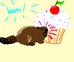 Beaver tackles cupcake with cherry on top