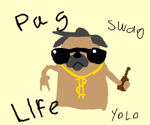 I Didnt Choose The Pug Life Drawception