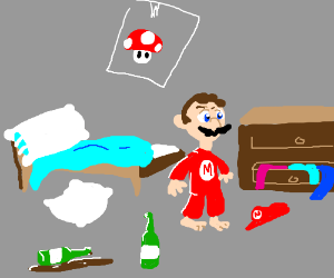 Mario! You completely trashed the place!
