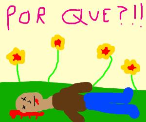 dead mexican bandit flowers