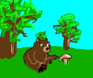 oh look a bear pointing at a mushroom