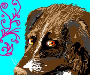I know I've been a bad dog, please forgive me!