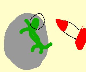 Nasa sent lizard on the moon