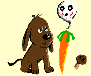 New dog stares at the soul off carrot andmushr