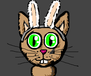 Cat wants to be a bunny