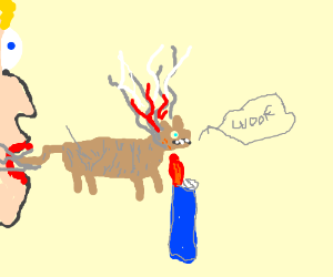 Smoke dog everyday
