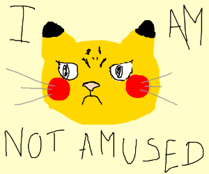 Cat-Pikachu is not amused.