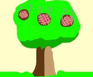 Pie Tree