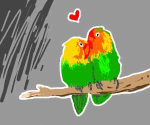 Lovebirds (as in the actual bird)