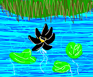 Black Lotus (not the car, silly)